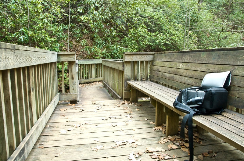 Nature Trail/Bench/Camera. The seating area of a nature trail, used for observation, and camera equipment. You don't have to go far from home sometimes royalty free stock photography