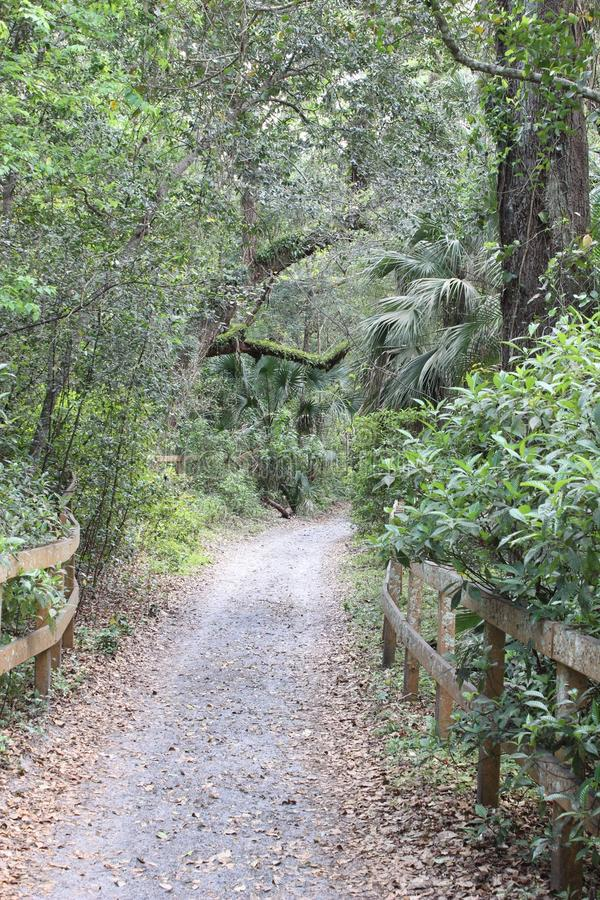 Nature Trail royalty free stock image