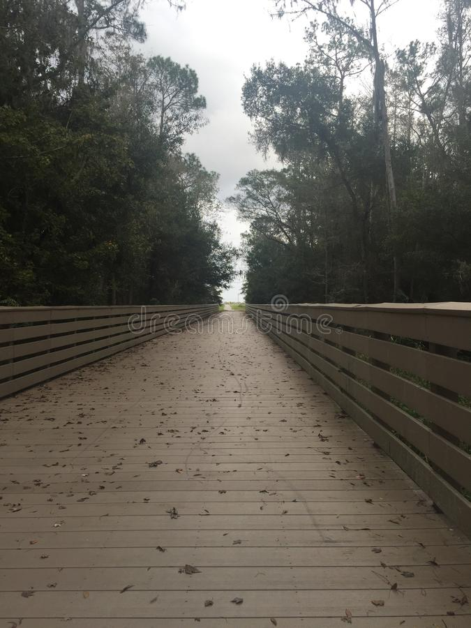 Nature trail royalty free stock photography