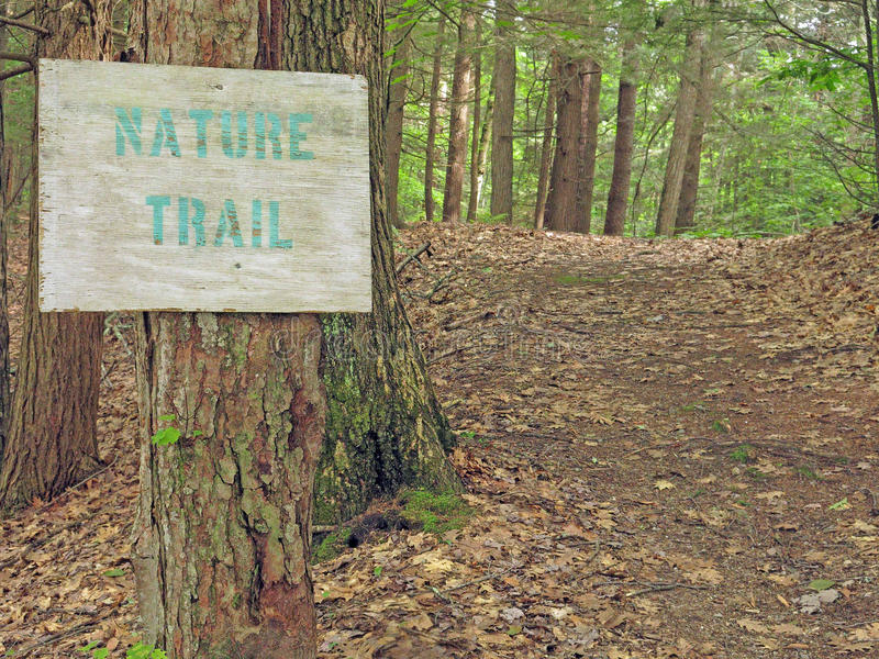 Nature trail and sign, Berkshires, Massachusetts. Nature trail uphill into forest with sign and path in Berkshires Massachusetts, early Summer royalty free stock photos