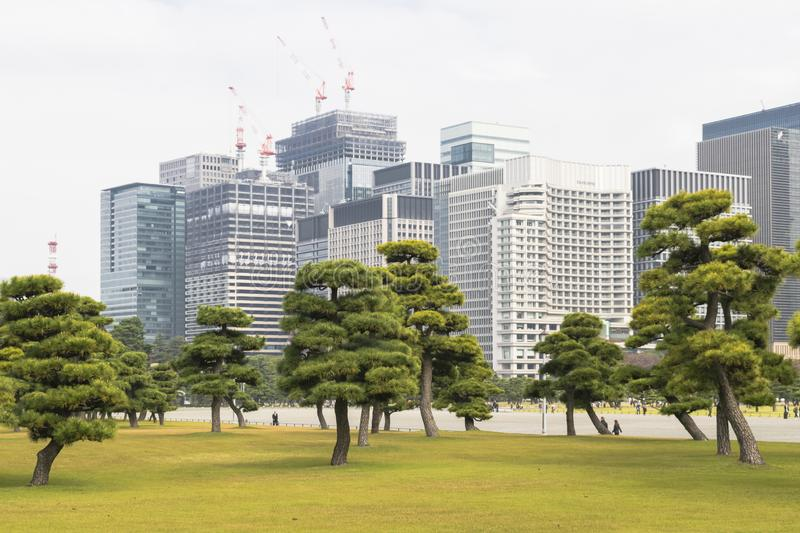 Nature or urban background with view of park in Tokyo stock images