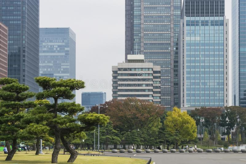 Nature or urban background with view of park in Tokyo stock image