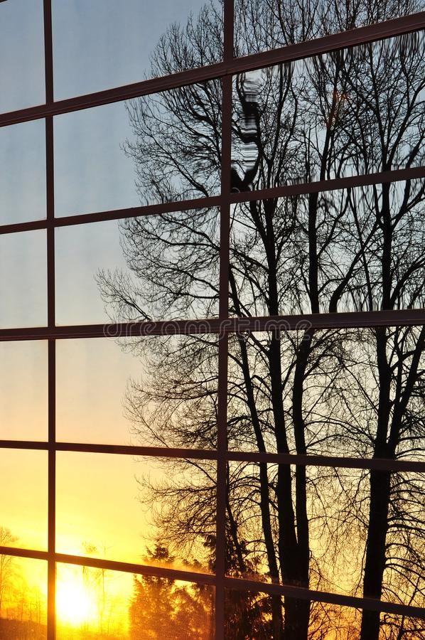 Download Nature View Reflect Of Window Stock Photo - Image: 13256122