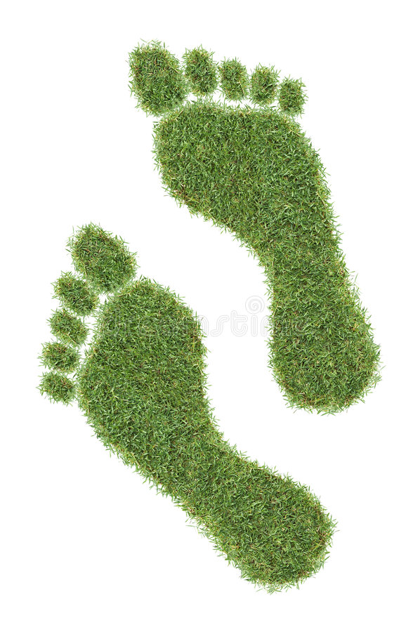 Download Nature walk stock image. Image of grass, footprint, lawn - 8436665
