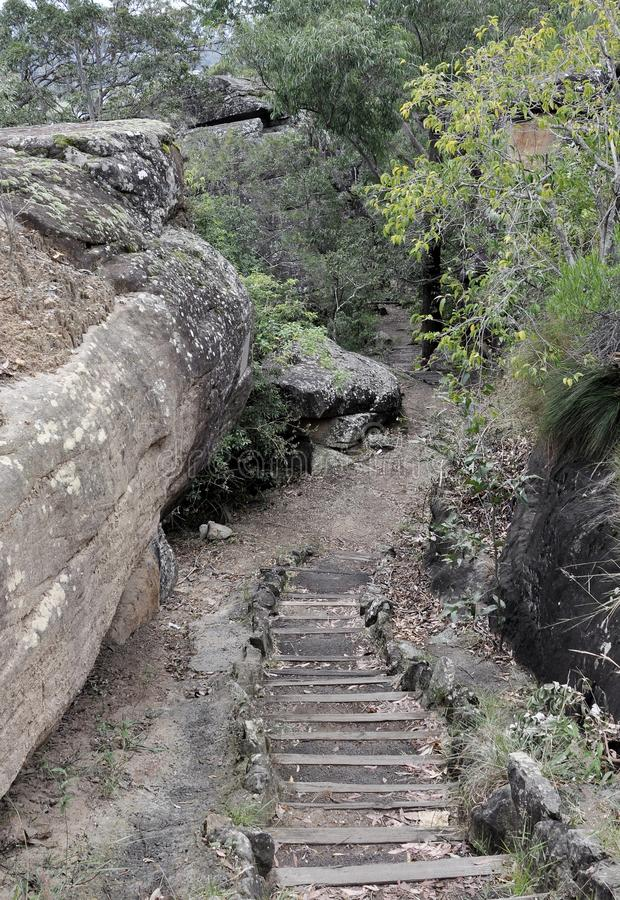 Nature Walk, Nowra. Stairs leading down to the hiking path Bens Walk in the escarpment near Nowra, New South Wales, Australia stock images
