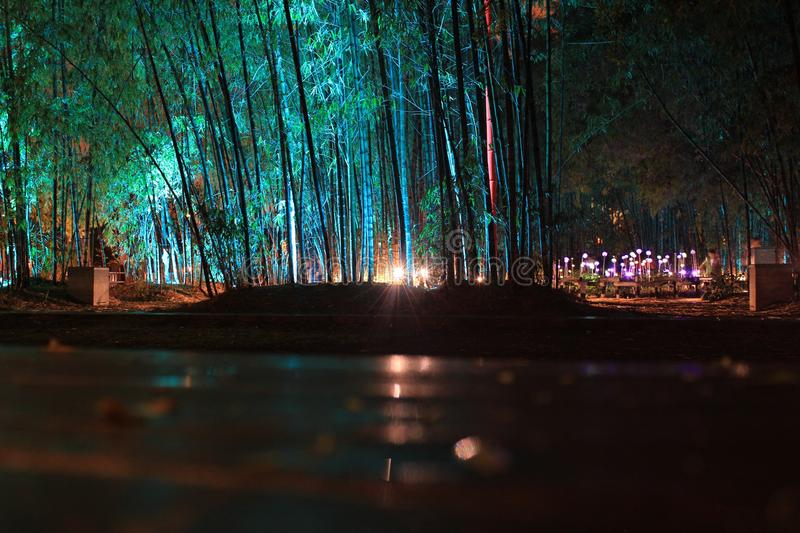 Nature, Water, Night, Reflection royalty free stock photography