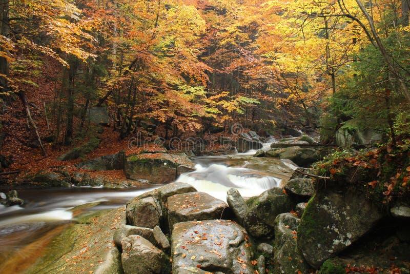 Nature, Water, Stream, Body Of Water stock photos