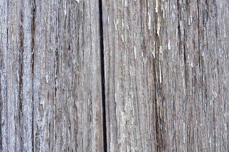 Nature wooden background. stock images