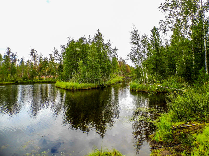 The nature of the Yamalo-Nenets Autonomous district royalty free stock image
