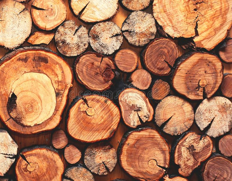 Naturel en bois a scié des rondins plan rapproché, texture ou fond image stock