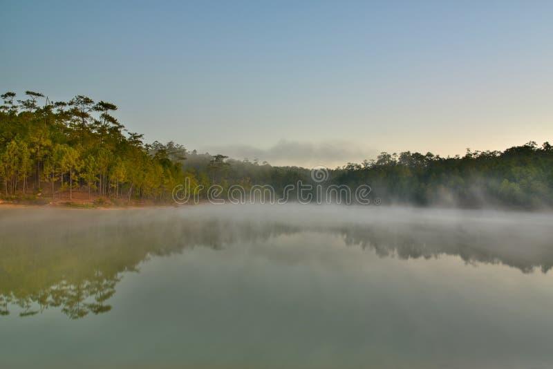 Naturel en Thaïlande photos stock