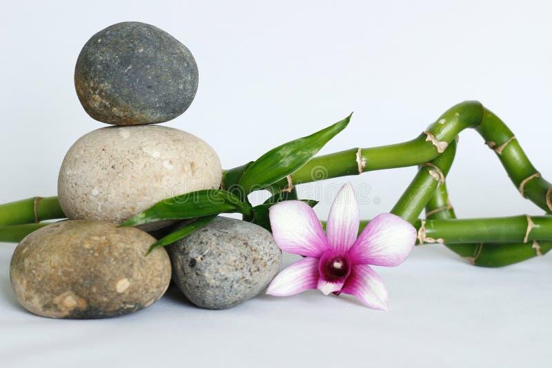 Naturel gris de cailloux dans le zen de mode de vie avec une orchidée à deux tons, du côté droit des bambous tordus sur le backgr photos stock