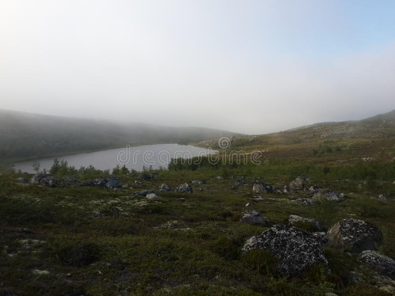 Naturen av den nordliga sommaren arkivfoton