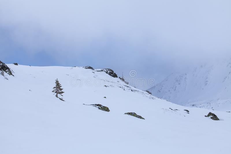 Naturen av höga berg royaltyfri fotografi
