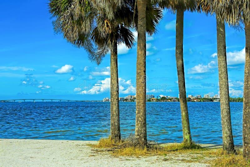 Naturen av Sarasota, Florida arkivfoton