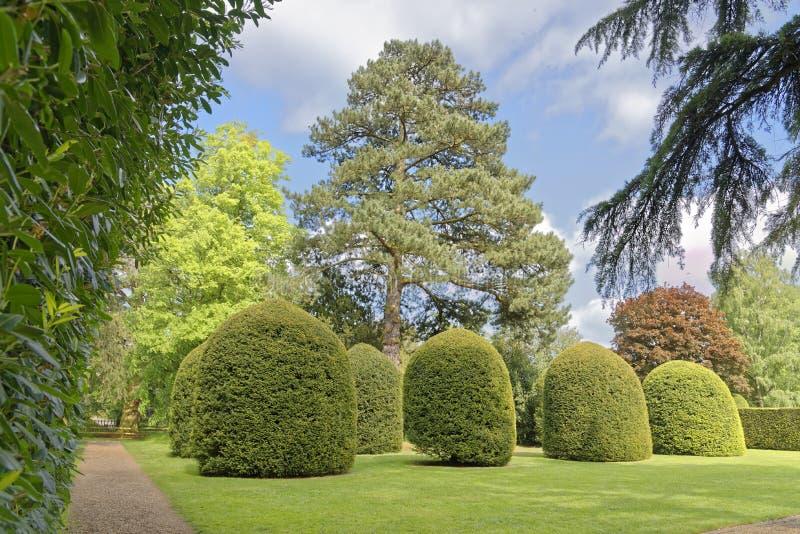 - naturen parkerar utomhus royaltyfri bild