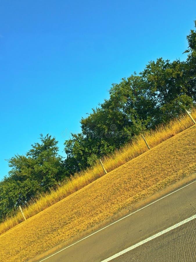 Natures's-Farbunterschied lizenzfreie stockfotografie