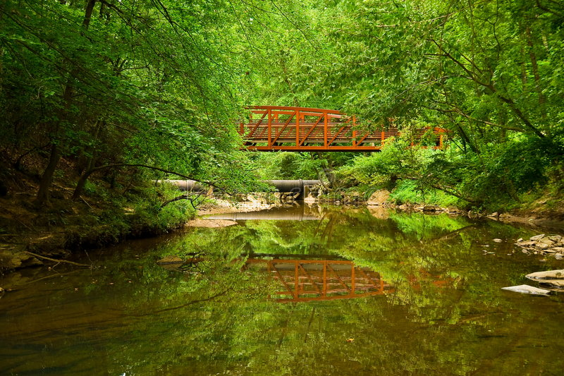 Download Natures reflection stock photo. Image of green, water - 7289556