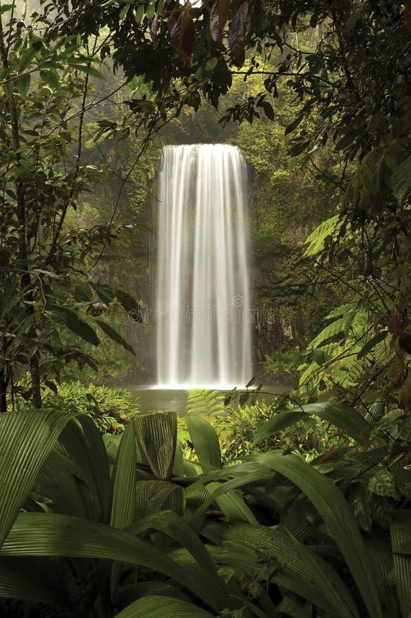 Natures Window stock image