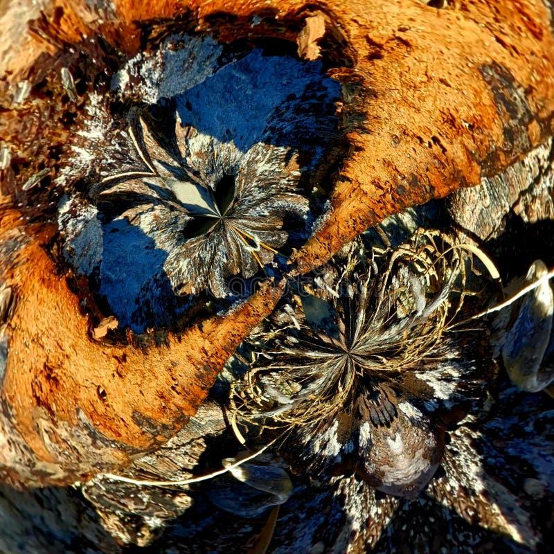 Natureza abstrata do Masquerade 2 imagens de stock