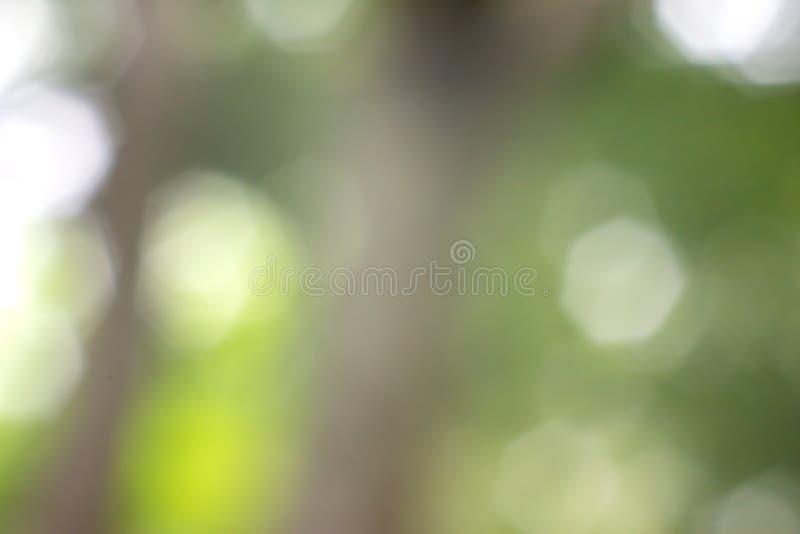 Natureza abstrata fundo borrado com bokeh fotografia de stock