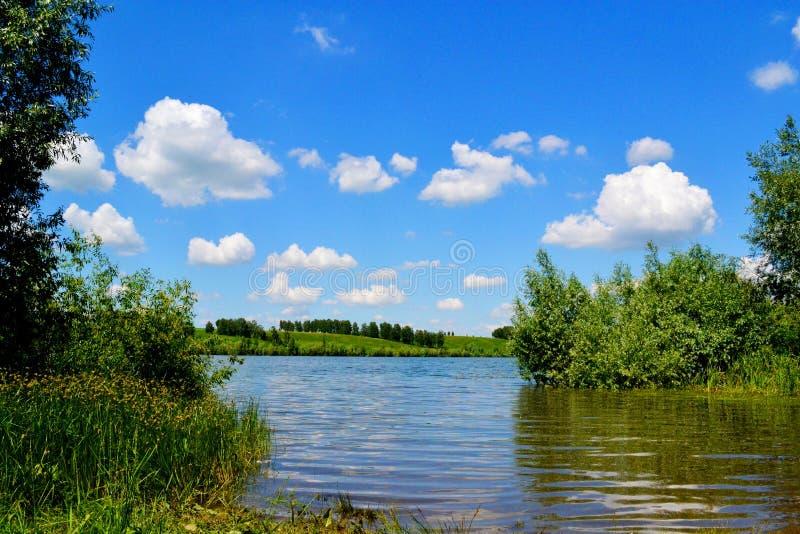 Natureza Altaya fotos de stock royalty free