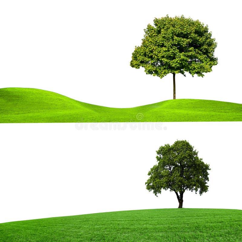 Natureza, bandeiras foto de stock
