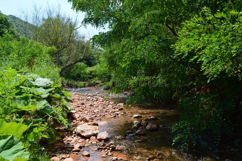Natureza bonita de Red River imagem de stock royalty free