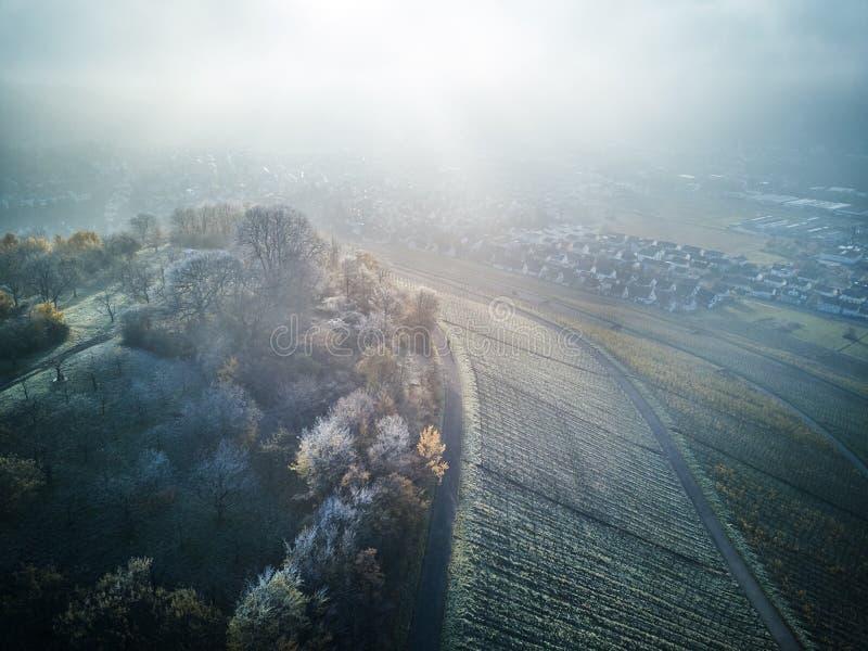 Natureza coberto de neve aérea Europa bonita Forest Mountain Travel White Famous do inverno da paisagem da metragem do zangão das fotografia de stock