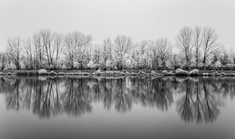 Natureza congelada pelo rio Elbe-Celakovice, representante checo foto de stock royalty free