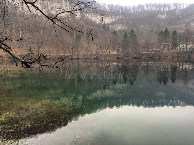 Natureza da árvore da paisagem da montanha do lago fotos de stock