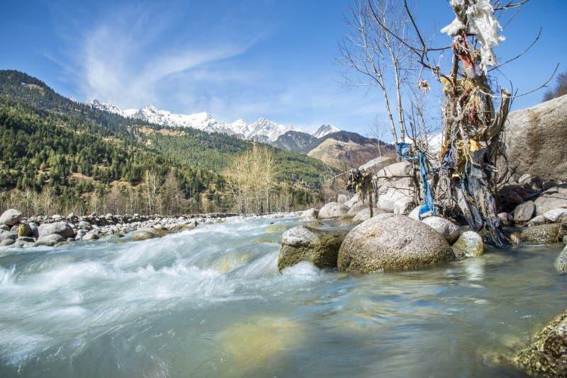 Natureza da cachoeira fotografia de stock royalty free