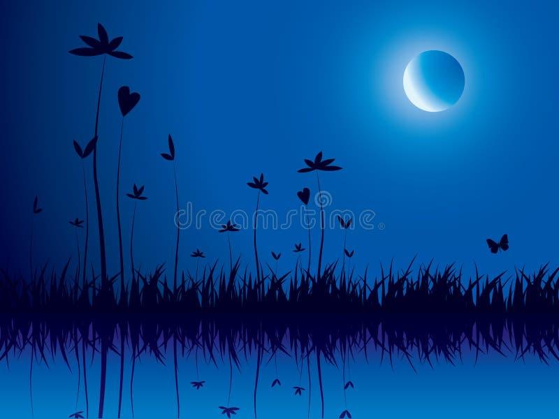Natureza da noite