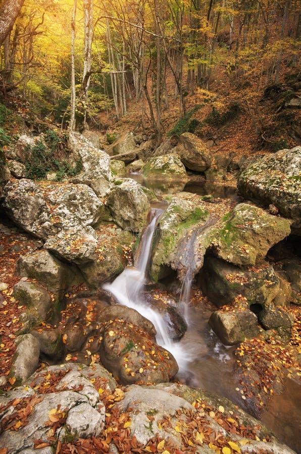 Natureza da paisagem do outono imagem de stock