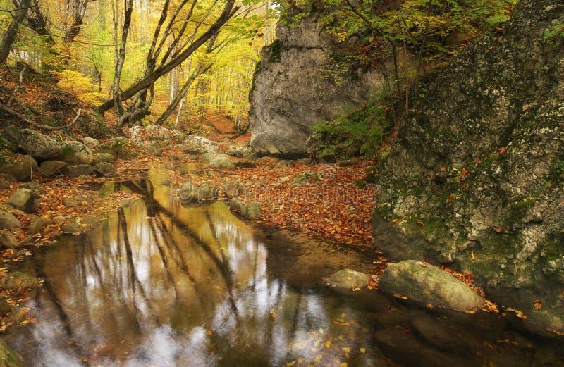 Natureza da paisagem do outono foto de stock