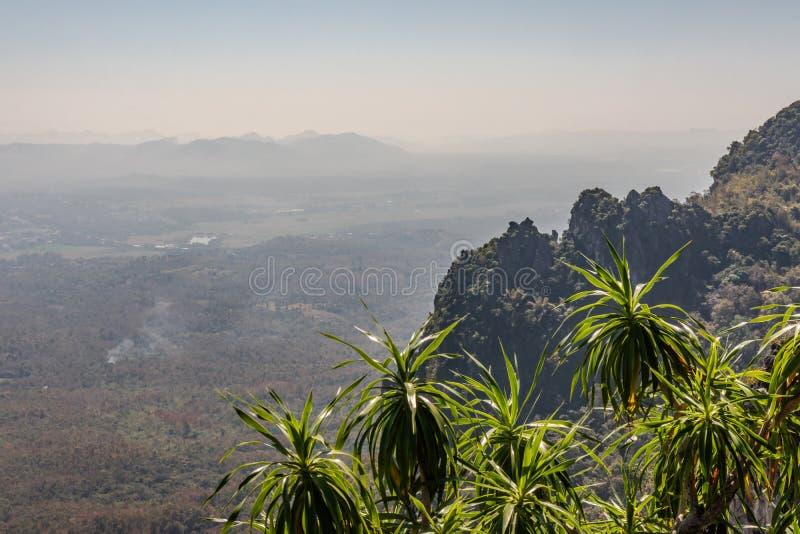 Natureza da paisagem da montanha e das árvores com floresta e a vila pequena na névoa imagem de stock