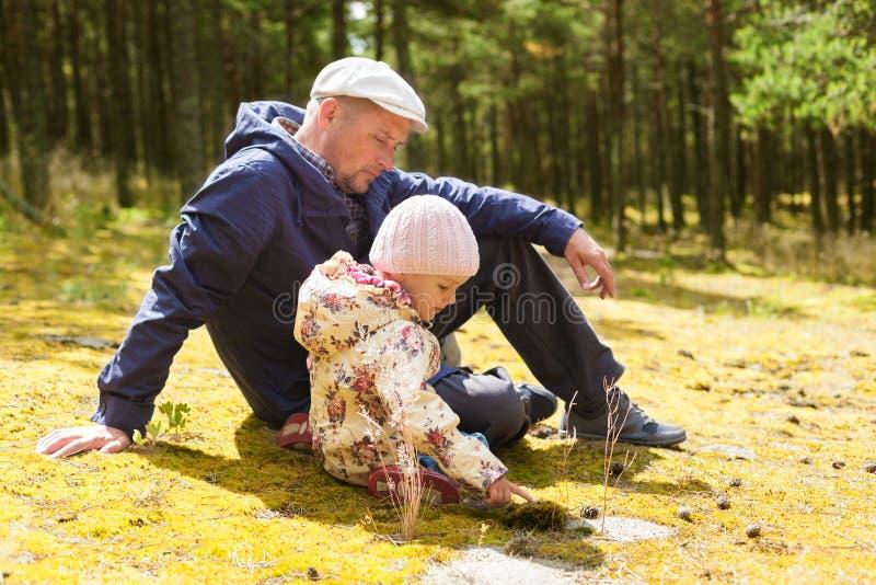 Natureza de ensino da criança do pai fotografia de stock