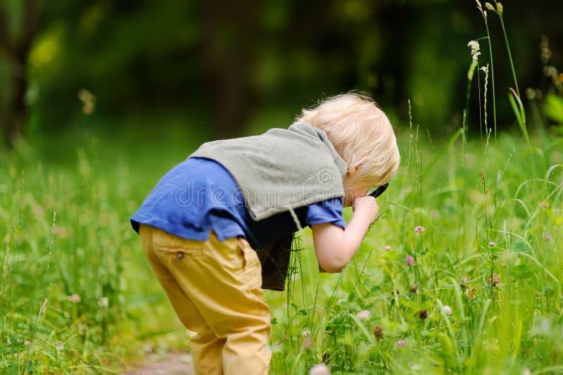 Natureza de exploração da criança encantador com lupa fotografia de stock