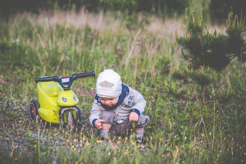 Natureza de exploração da criança da criança fotografia de stock royalty free