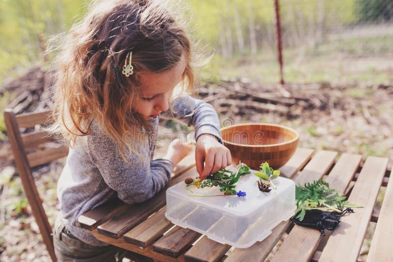 A natureza de exploração da menina da criança na floresta adiantada da mola caçoa a aprendizagem amar a natureza Crianças de ensi fotos de stock royalty free