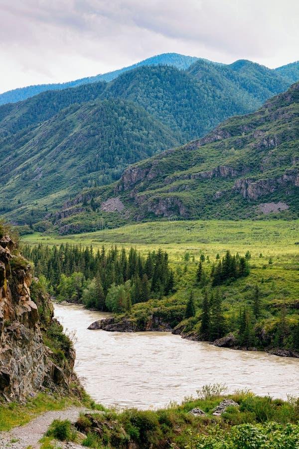 Natureza de montanhas de Altai e do rio de Katun imagens de stock