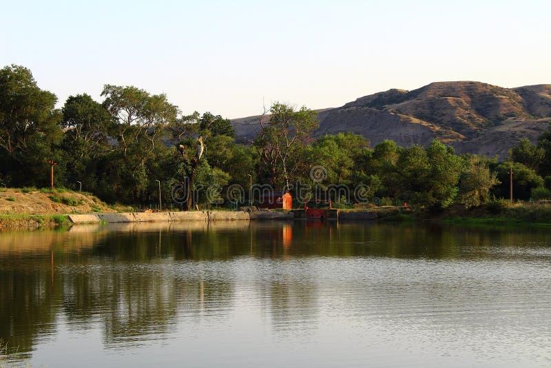 Natureza do beira-rio fotografia de stock