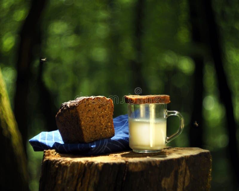 Natureza do leite do pão imagens de stock royalty free