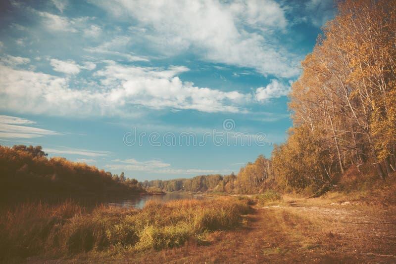 Natureza do outono com céu bonito foto de stock royalty free