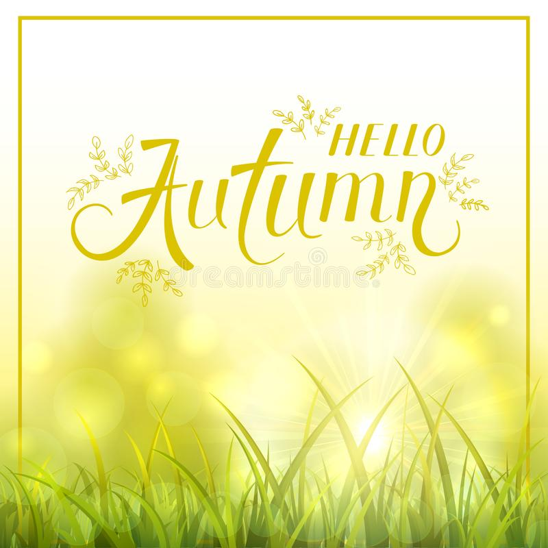 Natureza do outono com grama e o sol shinning ilustração royalty free
