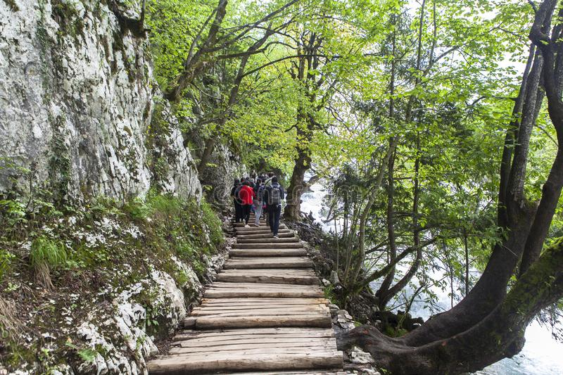 Natureza do parque nacional dos lagos Plitvice no verão foto de stock