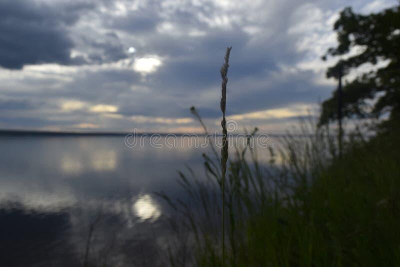 Natureza do Rio Volga fotos de stock royalty free