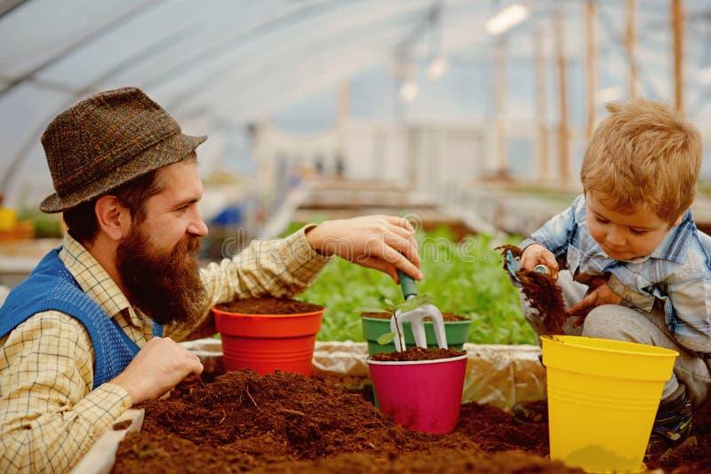 Natureza e cuidado natureza do cuidado do pai e do filho r cuidado da fam?lia sobre a natureza na estufa tudo imagem de stock