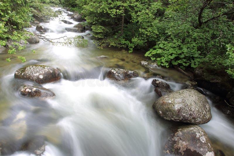 Natureza em montanhas altas de Tatras foto de stock royalty free