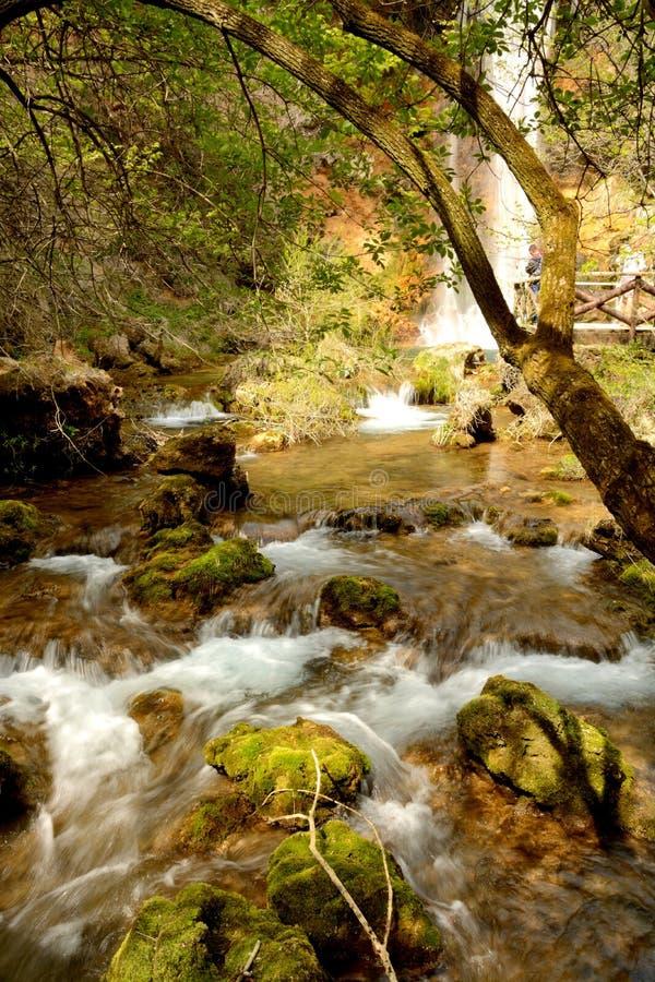 Natureza em Serbia foto de stock